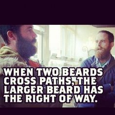 Beard quotes: Top 60 Best Funny Beard Memes - Bearded Humor And Quotes. Ioi Doyeon, No Shave November, September, Beard Quotes, Pin Up, Beard Humor, Men Humor, Great Beards, Guys With Beards