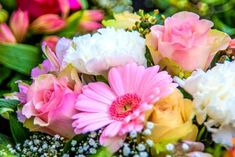 Avem multe de aflat despre personalitatea noastra, lucruri pe care nu le stiam si de cele mai mult ori, astrele ne dezvaluie adevarul despre caracterul nostru. Totusi, ziua in care ne-am nascut spune extrem de multe despre noi. Iti plac florile?...