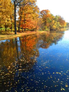 Cedar River, Lansing MI in the Fall! #Beautiful #ChangingLeaves #LoveLansing Discover things to do in Lansing in the Fall at http://www.lansing.org/events/fallfun/