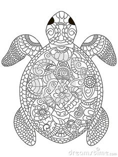 Image Result For Turtle Colouring Pages Adults