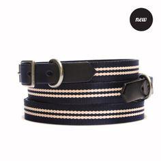Old School Stripe Collar   201