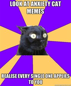 Anxiety Cat - Look at anxiety cat memes realise every single one applies to you