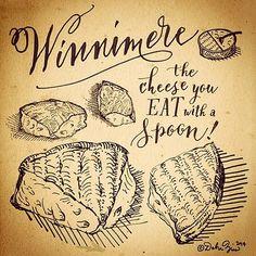 cheese illustration saxelby winnimere jasper hill farm cellars