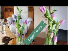 Fruhling Im Vogelkafig Deko Im April Fruhjahrsdeko Tulpen Narzis