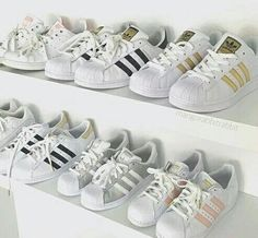 Adidas collection!
