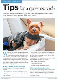 Client handout: Tips for a quiet car ride Veterinary Care, Veterinary Medicine, Veterinary Technician, Dog Stress, Pet Clinic, Puppy Training Tips, Dog Anxiety, Dog Car, Pet Travel