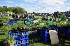 Eco fair Regent Park