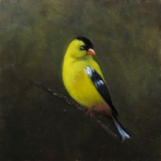 Marjarie Arcuri's Gold Finch For Sale @ the 5th Annual Art of Preservation Sept 24th at Kirkland Farm artofpreseration@gmail.com