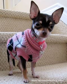 Argyle and pink... how could you go wrong?