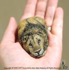 From stones to cute animals is only one artist: Akie Nakata. A Japan native artist who paints stones and turn them into these cute animals that look so real. Painted Rock Animals, Painted Rocks Kids, Painted Stones, Art Pierre, Rock Painting Ideas Easy, River Stones, Pet Rocks, Rock Crafts, Japanese Artists