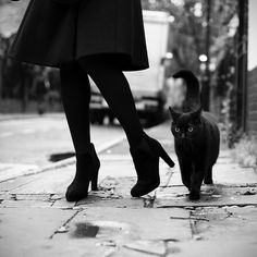 Black cat and the lady. Black and white photography.