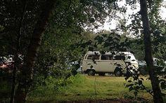 Burnbake campsite is close to Studland Bay