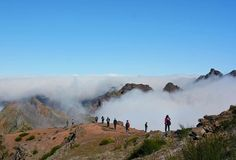 8 Things to Know About Madeira Island in Portugal
