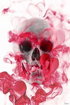 Skull 2 Canvas Wall Art