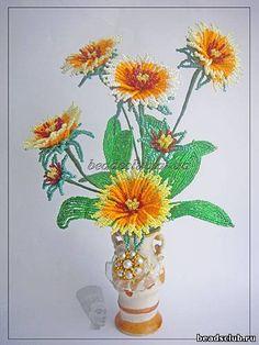 Солнечный цветок -Гайлардия