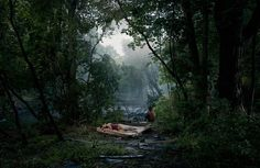 """They [the photographs] do feel like drawings in a way or etchings. They also have this unbelievable, partially because of the kind of camera we used, this unbelievable sense of depth of field and detail, which is very important to me because every single blade of grass is in hyper-description."" Gregory Crewdson"