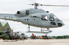 Armée de l'Air Fennec & Armée de Terre Gazelles.