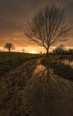 Puddle Sunset - Footpath puddle at Melbourne lake