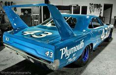 Richard Petty's Super Bird