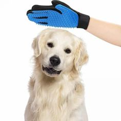 Deshedding Pet Hair Removal Massage Glove (4 colors). 🐶 Online shopping for Little Dogs Supplies with free worldwide shipping.🐶 Be sure you follow for daily pics & offers! 🐶  . . . #dogs #doggy #dog #doglover #cutedogs #doglovers #puppy #love #frenchie #bulldog #westie #hund #bully #frenchbulldog #pet #animal #chihuahua #labrador Cleaning Gloves, Pet Hair Removal, Fingers Design, Bad Hair Day, Little Dogs, Dog Supplies, What Is Like, Cute Dogs, Your Pet