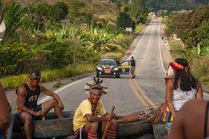 Brasil: Programa REDD perpetúa milenario despojo de tierras de guerreros Pataxó