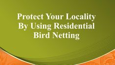 Advantages of Using Residential Bird Solutions Bird Netting, Clean House