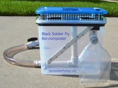 Tons of info and pics 6 gallon BSF Bio-composter. Build Compost Bin, Compost Soil, Worm Composting, Garden Compost, Best Fish For Aquaponics, Aquaponics Kit, Indoor Aquaponics, Pet Chickens, Chickens Backyard
