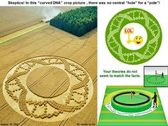 Crop Circle News Crop Circles, Crop Pictures, Sacred Geometry Tattoo, Fibonacci Spiral, Alex Grey, Unexplained Mysteries, Sea Monsters, Flower Mandala, Flower Of Life