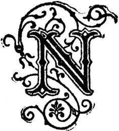 The letter N