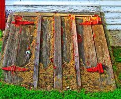 Wooden Cellar Doors