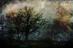 Starry Night by Randi Grace Nilsberg on 500px