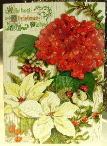 punch studio 59772 christmas greeting cards holiday botanical victorian die cut glitter embellished boxed set of 12 by punch studio 1499