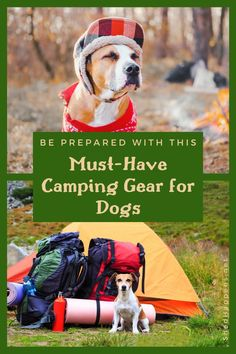 Hiking Dogs, Hiking With Dog, Camping With A Dog, Camping Dogs, Camping Stuff, Tent Camping, Dog Bucket List, Must Have Camping Gear, Dog Friendly Hotels
