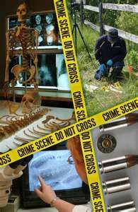 10 Raft Project Images Forensic Anthropology Forensics Anthropology