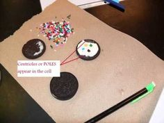 CELL CH 3 Mitosis using oreos - edible biology! Science Cells, Science Biology, Science Education, Life Science, Science Penguin, Animal Science, Ap Biology, Physical Science, Earth Science