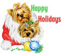 We have good collection of Merry Christmas Greetings Cards and Merry Christmas eCards to send to your friends and family. Holiday Gif, Christmas Ecards, Holiday Images, Merry Christmas Greetings, Christmas Greeting Cards, Christmas Pictures, Christmas Animals, Christmas Dog, Xmas