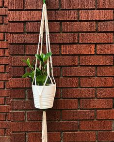 Finished this custom little beauty - Ramsay with green accent [fits a pot] . Green Accents, Plant Hanger, Macrame, It Is Finished, Plants, Beauty, Instagram, Home Decor, Decoration Home