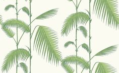 Palm (95/1009) - Cole & Son Wallpapers - This classic Palm leaves design is perfect for feature walls and will create a huge impact, shown here in leafy green on a ivory background. Please order a sample for true colour match. Paste-the-wall product.