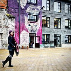 Complete Tallinn city guide now live on @bloglovin and the blog- including the cool hipster area of Telliskivi Creative City #HipsterParadise #Tallinn #Estonia #TravelGuide by global.roaming