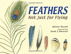 My Feathery Friends | BetterLessonLesson plans and free resources Life Sciences NGSS Grade 1 Unit @betterlesson