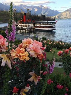 Summer blooms out at Walter Peak with the TSS Earnslaw in the background. Not a bad ride home. Bungee Jumping, Photo Competition, Adventure Tours, Lodges, Free Photos, Us Travel, New Zealand, Things To Do, Places To Visit