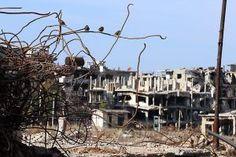 Vogels tussen de puinhopen van de Syrische stad Homs. beeld AFP