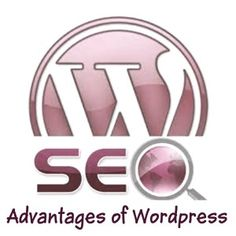 SEO-Friendly  How the search engines love WordPress!!!    If you want to be on the first page of Google, WordPress is extremely capable of taking you there.  With its self-ping feature, a ping is sent to search engine like Google, Bing or Yahoo each time your blog or website is updated.  Amazing! There are tons of plugins available to even further extend your SEO.