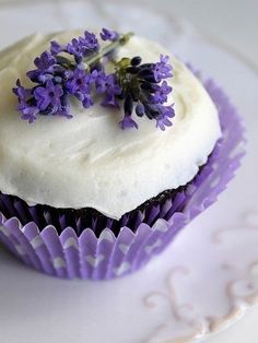lavender cupcakes sound so yummy White Cupcakes, Yummy Cupcakes, Mini Cakes, Cupcake Cakes, Cup Cakes, Lavender Recipes, Cupcake Recipes, Let Them Eat Cake, Just Desserts