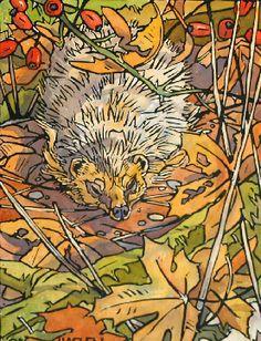 Andrew Haslen - Hedgehog  Linocut and Watercolour