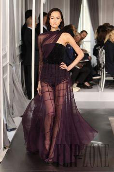 Dior Spring-summer 2012 - Couture - http://www.flip-zone.com/dior-2490