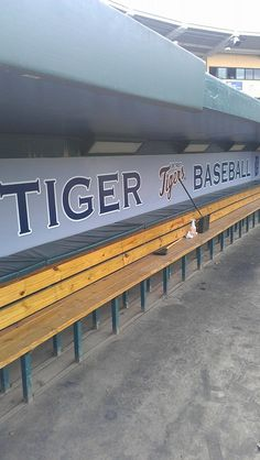 @Detroit Tigers #SpringTraining 2014 in Lakeland, Florida. Credit: Rob Cramer #Tigertown