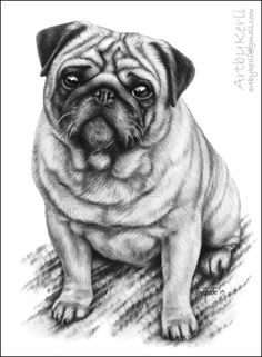 Jansson by Kerli T. on ARTwanted - Sweet Pugs Animal Sketches, Animal Drawings, Pencil Drawings, Mops Tattoo, Pug Tattoo, Pugs And Kisses, Pug Art, Pug Pictures, Cute Pugs