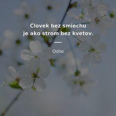 Osho, True Words, Jokes, Motivation, Life, Fotografia, Quote, Husky Jokes, Memes