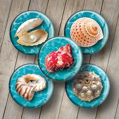Hey, I found this really awesome Etsy listing at https://www.etsy.com/listing/235350202/sea-shells-1-bottle-cap-images-for